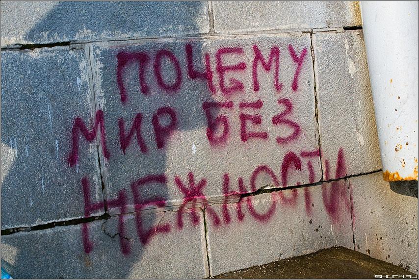 Почему мир без НЕЖНОСТИ? - крик отчаенье стена надпись фото фотосайт