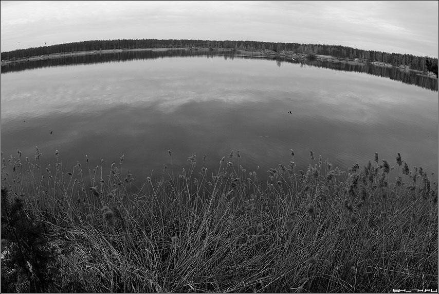 А земля то - Круглая - земля река небо трава чернобелая ширик фишай фото фотосайт