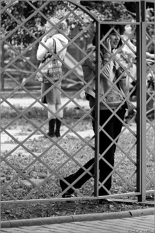 Важный разговор - девушка телефон решетка забор чернобелая подруга фото фотосайт