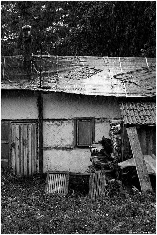 Сарай в дождь - дождь таложня сарай чернобелая фото фотосайт