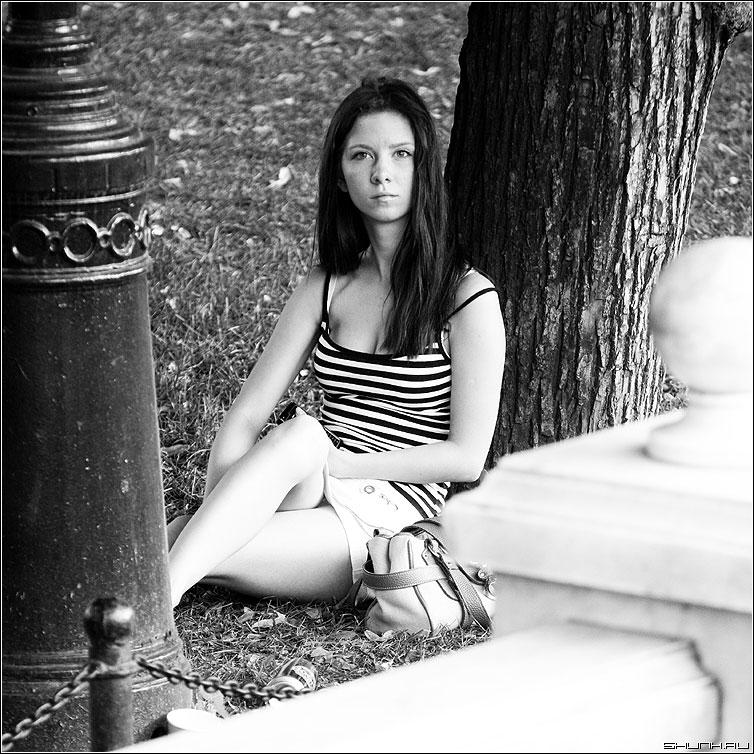 Незнакомко - девушка манежко дерево чернобелая квадрат фото фотосайт
