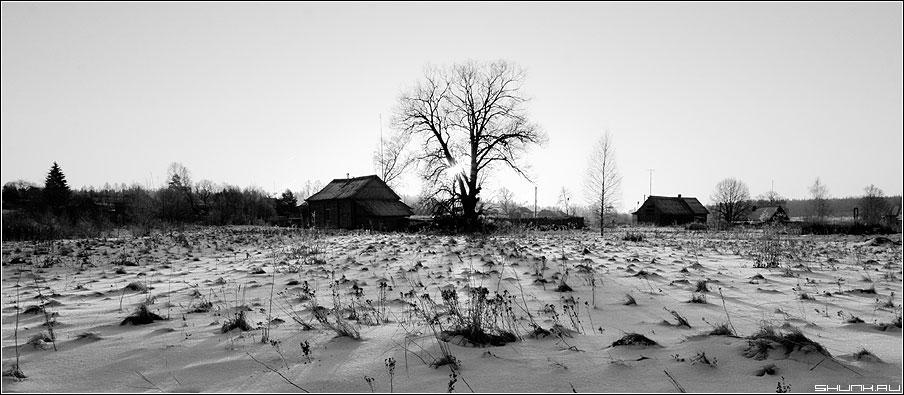 Играя тенями - тени чернобелая деревня поле дом дерево лучи ильинское фото фотосайт