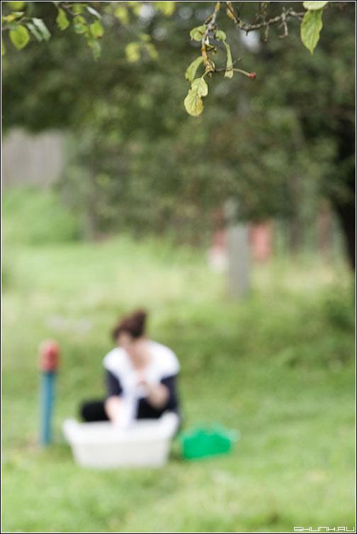 Стирка - стирка колонка размытое деревня яблоня фото фотосайт