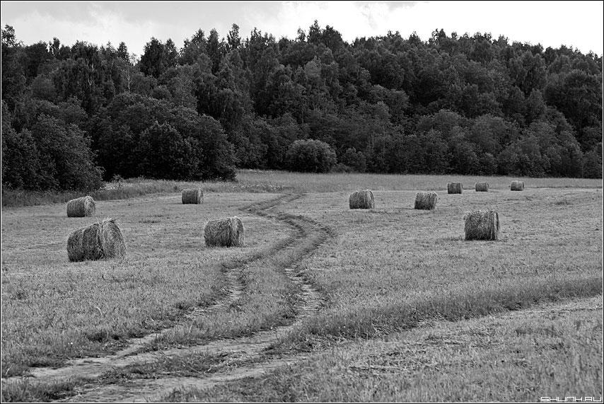 На зиму - лето поле сено чернобелая дорога фото фотосайт