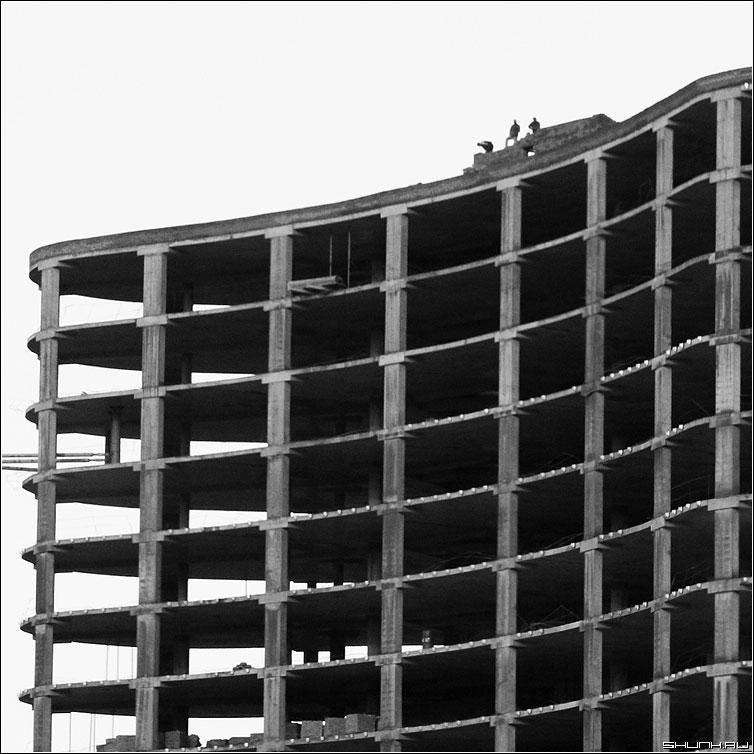Предрассудок строителей - стройка квадрат чернобелая строители фото фотосайт