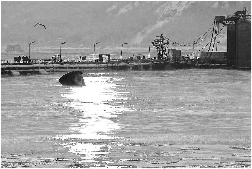 Порт - мурманск порт чернобелая зима фото фотосайт