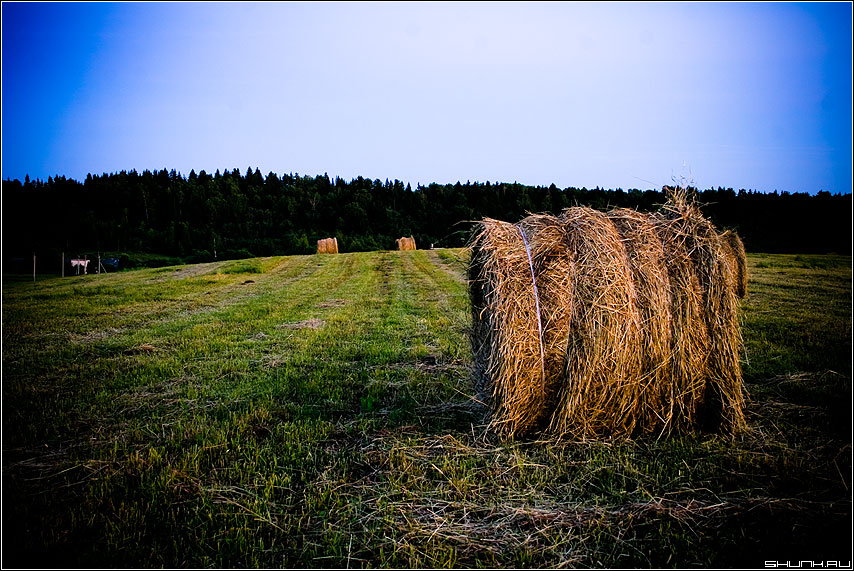 Поле в обработке - деревня сено поле цвета фото фотосайт