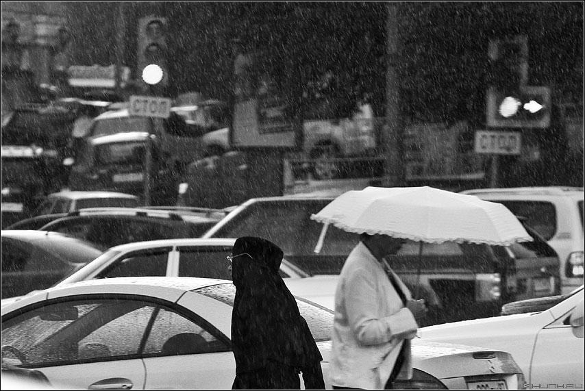 Черно-белое - черное белое дождь зонт светофор дорога авто фото фотосайт