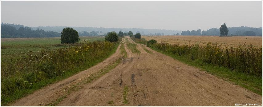 Родные просторы - дорога ильинское поля деревья просторы колея небо туман фото фотосайт