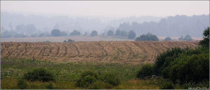 Полевая зарисовка - поле скошеное деревня туман лес фото фотосайт