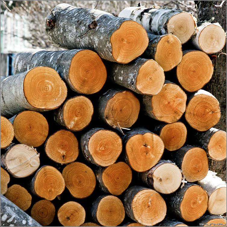 Дрова - дрова спил квадрат цвет фото фотосайт