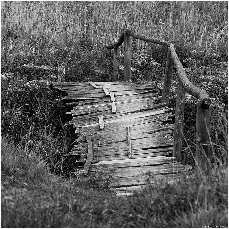 Любимый мостик - ильинское деревня квадрат чернобелая фото фотосайт