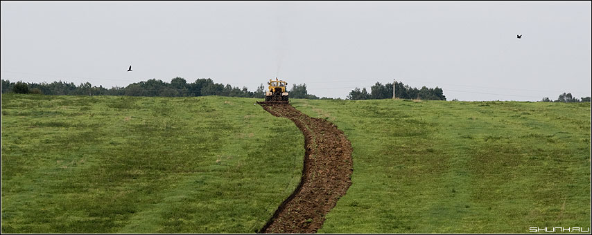 Старый конь борозды не портит - поле трактор борозда пашня фото фотосайт