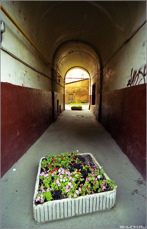 Про арку и клумбы - пленка арка прогулка цвет пленка kodak фото фотосайт