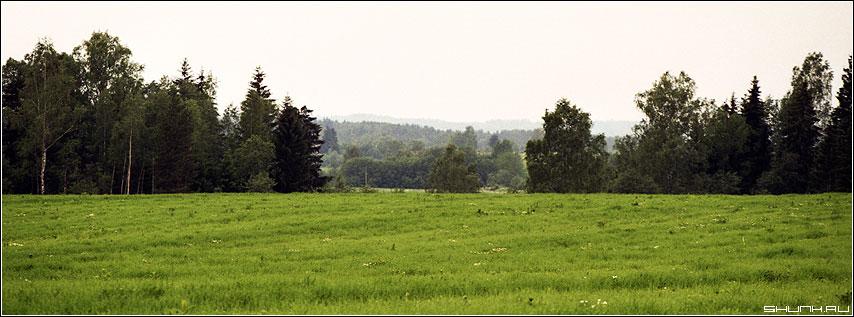 За полем лес, а за лесом поле... - деревня поле лес лето зелень небо kodak фото фотосайт