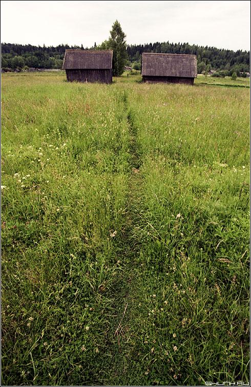 Тропинко - тропинка луг сарай деревня пленка kodak фото фотосайт