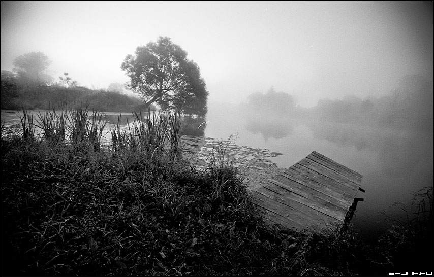 Мостик и ветла - деревня речка kodak пленка чернобелая фото фотосайт