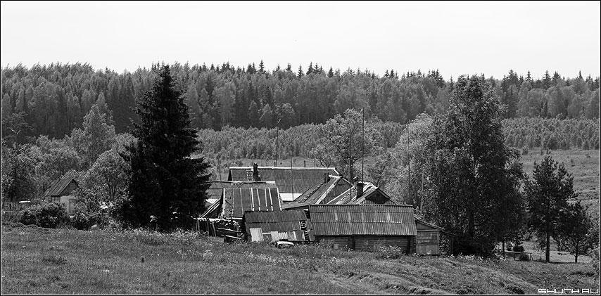 На склоне... - дома деревня чернобелое лес небо фото фотосайт