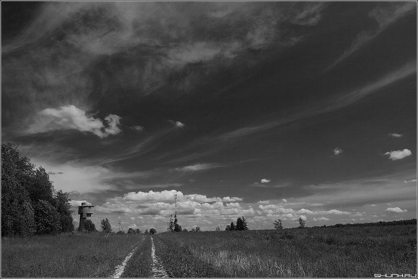 Когда по дороге уходишь в небо - чернобелая небо red фильтр дорога лес башня фото фотосайт