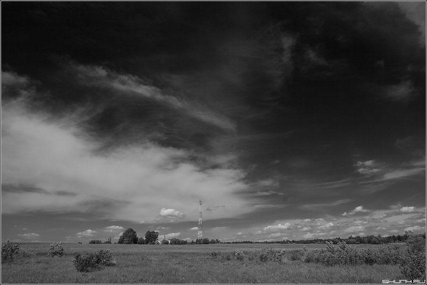 Когда небо белеет - чернобелая небо red фильтр поле лето фото фотосайт