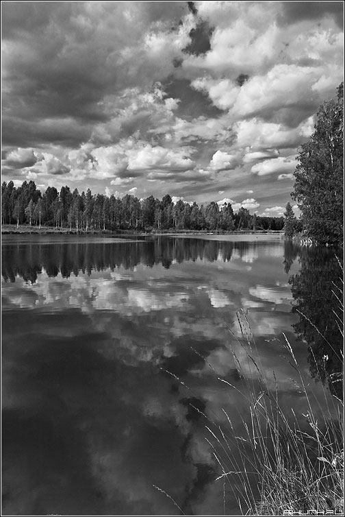 Когда небо тонет в реке - чернобелая небо red фильтр река отражение лес фото фотосайт
