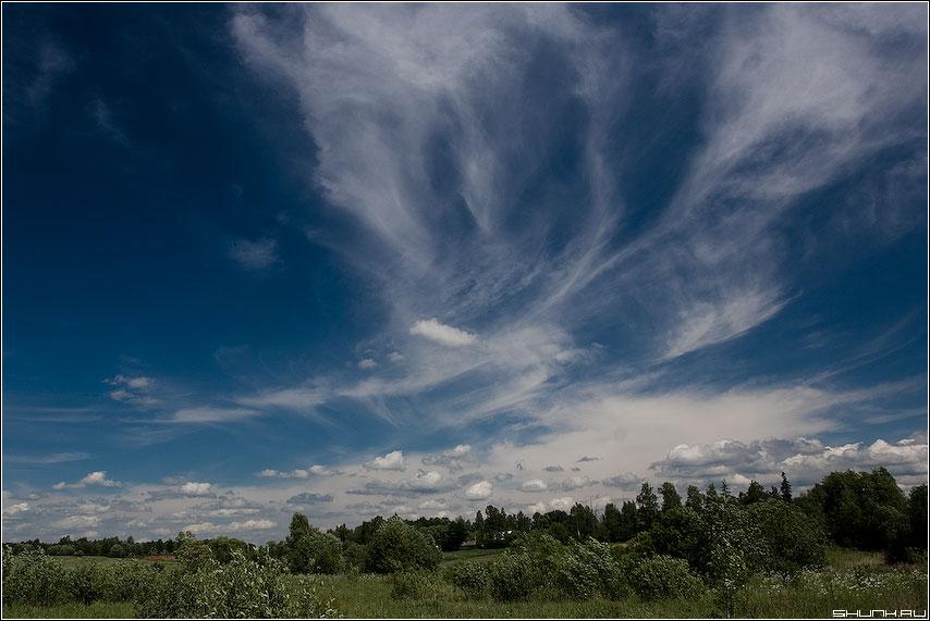 Небесные узоры - цветное небо облака лес деревня фото фотосайт