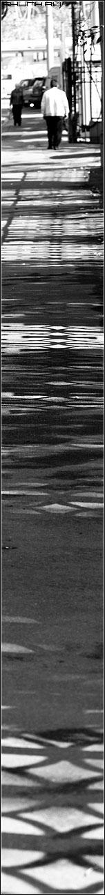 Теневая дорога - мужик тени забор полосатая длинная фото фотосайт
