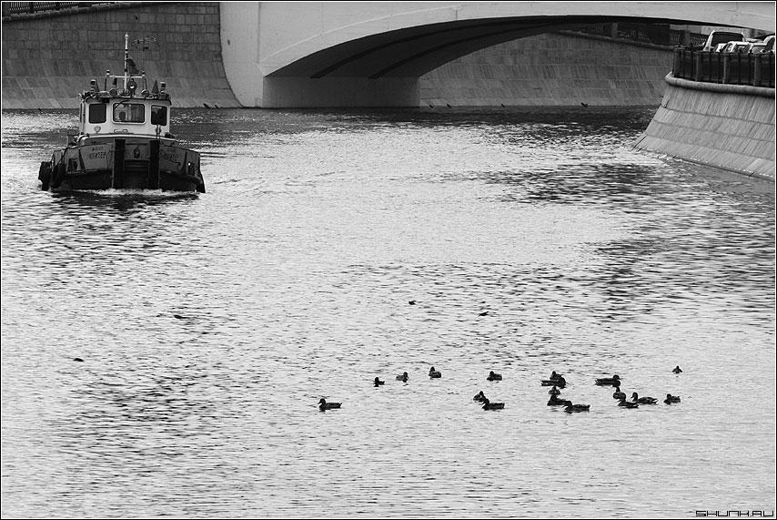 По Москве реке... - тягач река москва утки черно-белая фото фотосайт