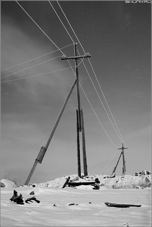 Про электричество - зима снег столбы чернобелая свет луна фото фотосайт