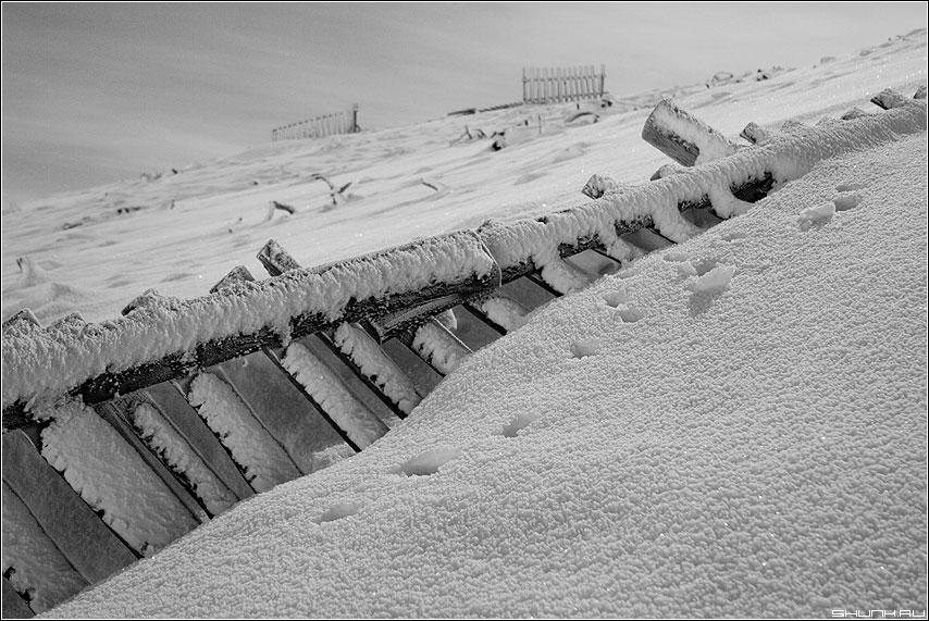 Про упавший забор - зима снег забор черно-белая свет луна фото фотосайт