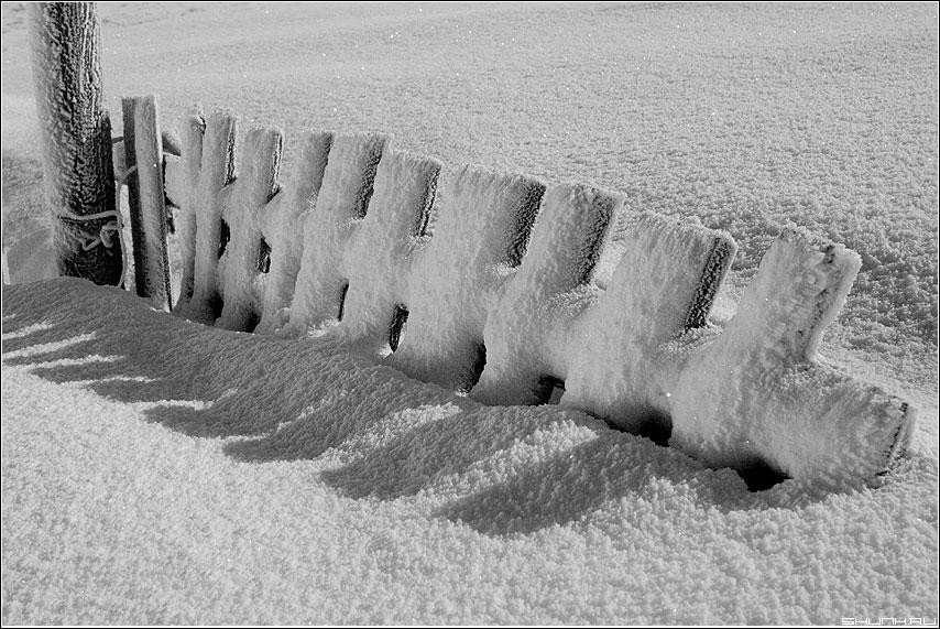 С холодком - зима снег забор черно-белая свет луна фото фотосайт