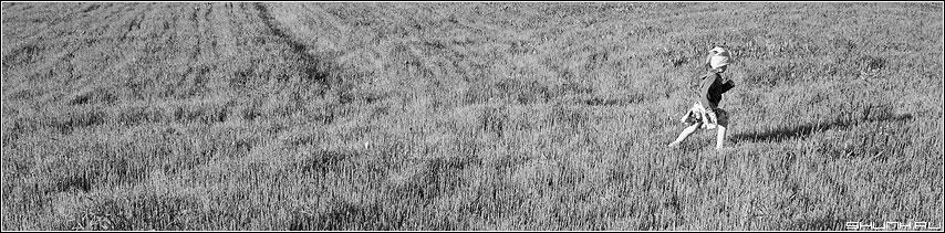 Полевой цветок - ребенок поле черно-белая фото фотосайт