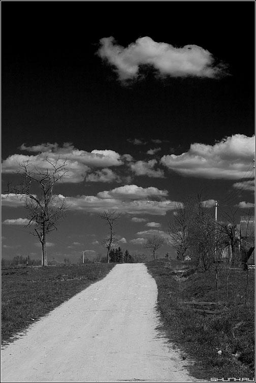 Дорога в небо - черно-белая облака дорога деревгя небо фото фотосайт