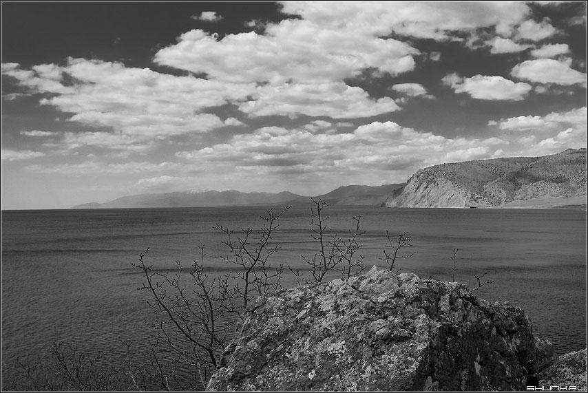Весна... - крым берег море черно-белая камень скалы веточки фото фотосайт