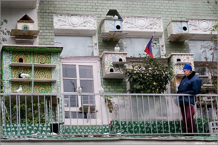 Рай на балконе - москва балкон центр дедушка увлечение голуби фото фотосайт