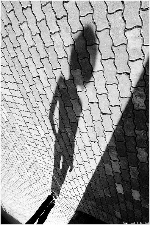 Фото в тени девушки брюнетки