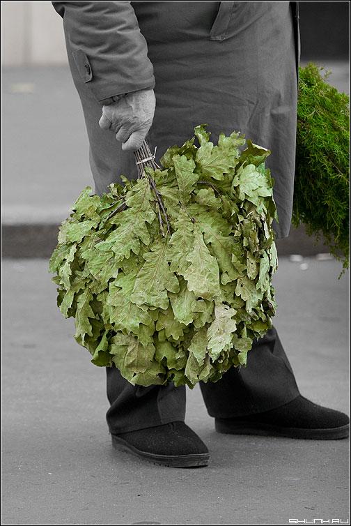 Про зеленый веник - баня веник зеленый цвет ноги мужик сандуны палитра фото фотосайт