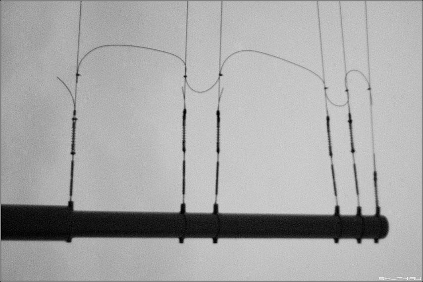 Ш - буква провода чёрно-белая элемент фото фотосайт