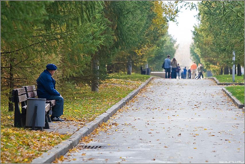 Одиночество - дедушка лавочка молодежь парк дорожка осень листва желтое фото фотосайт