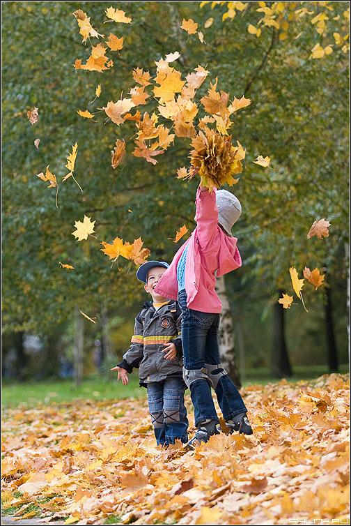 Сегодня у 27,5 тыс. нижнекамских школьников начались осенние каникулы.  Отдыхать дети и подростки будут до 8 ноября.