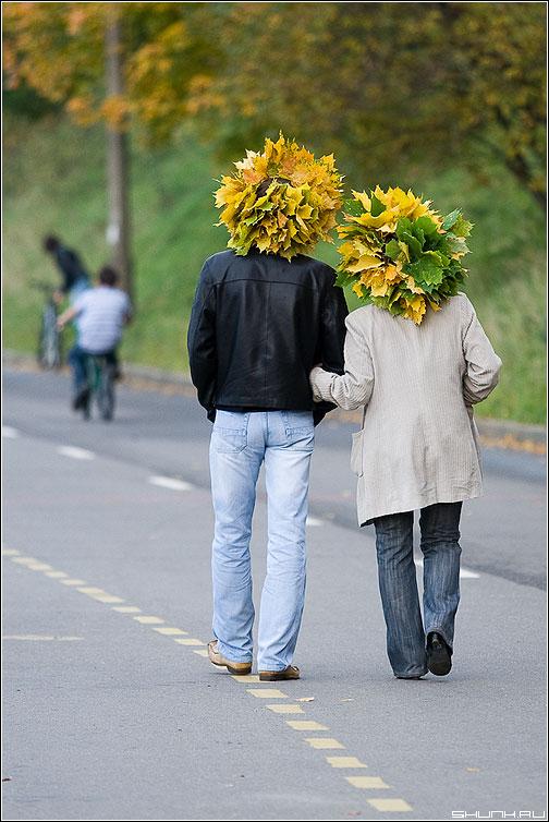 Шапки осени - осень парочка он она листья венок цвета дорога фото фотосайт