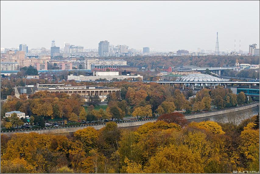 Осень в городе - смотровая осень желтый листва вид москва горизонт фото фотосайт