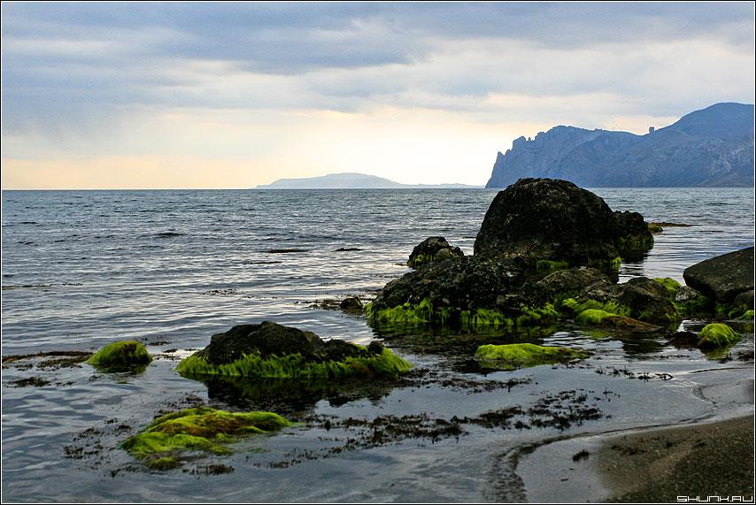 Про зеленые водоросли - водоросли крым море небо скалы кара-даг обработка фото фотосайт