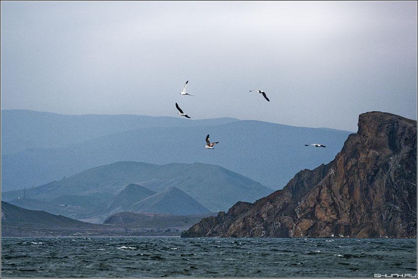 Горы у черного моря - море крым горы небо чайки скалы туманы фото фотосайт