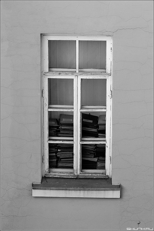 Градусник знаний - окно книги подоконник чёрнобелая фото фотосайт