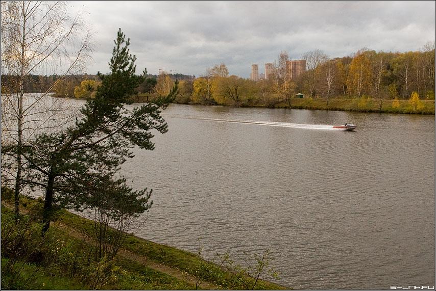 За катером... - осень река москва берег дома сосна катер волны фото фотосайт
