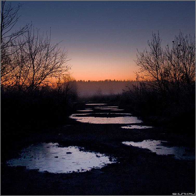 Замерзшие лужи на рассвете - осень лужи дорога рассвет кусты деревня квадрат фото фотосайт