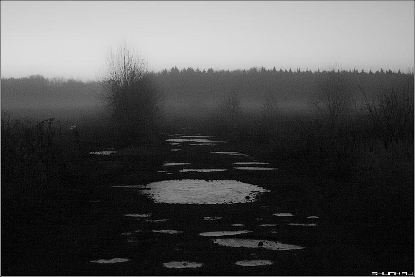 Млечный путь - лужи пороз осень чёрнобелая туман деревня фото фотосайт