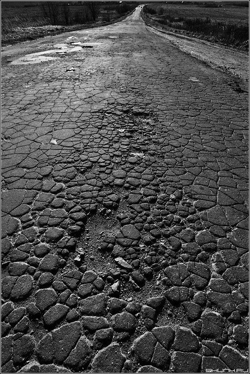 Калужской тропою... - дорога пленка чёрнобелая асфальт фото фотосайт