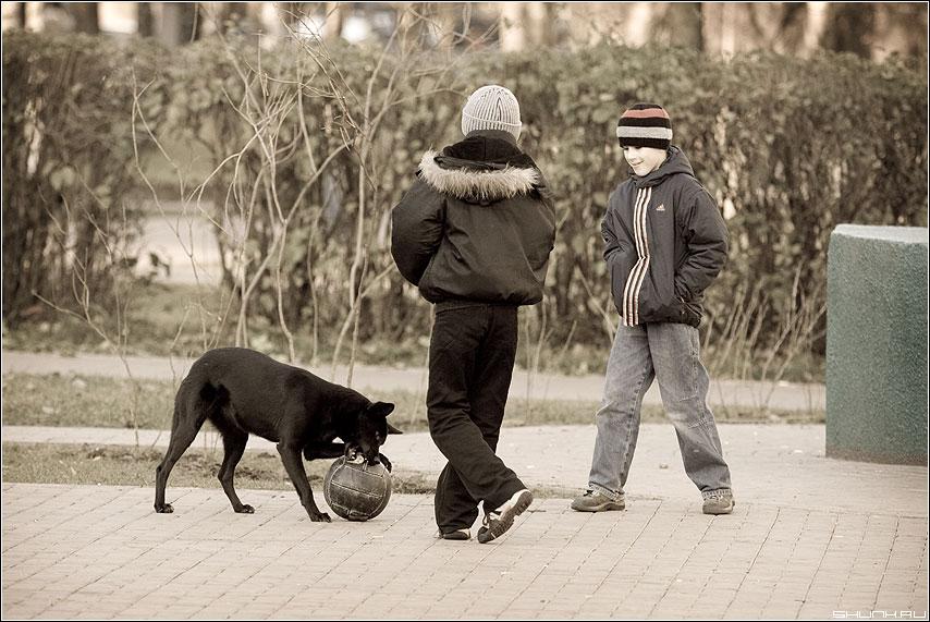Нападающий сборной... - ребята двор собака adge мяч игры фото фотосайт